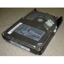Жесткий диск 18.4Gb Quantum Atlas 10K III U160 SCSI