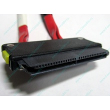 SATA-кабель для корзины HDD HP 451782-001 459190-001 для HP ML310 G5