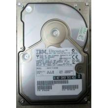 Жесткий диск 18.2Gb IBM Ultrastar DDYS-T18350 Ultra3 SCSI